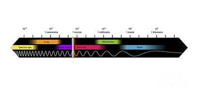 Electromagnetic Spectrum Photograph - Electromagnetic Spectrum, Artwork by Equinox Graphics