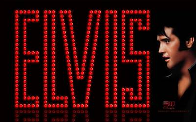 Elvis Presley Digital Art - Elvis Presley by Cool Canvas