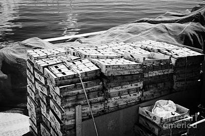 empty crates for bluefish tarragona sardines in the port harbour of Cambrils Catalonia Spain Art Print
