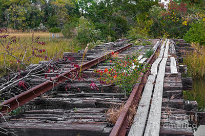 Photograph - Train Tracks End Of The Line by Dale Powell