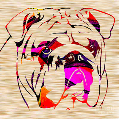 Dog Art Mixed Media - English Bulldog by Marvin Blaine