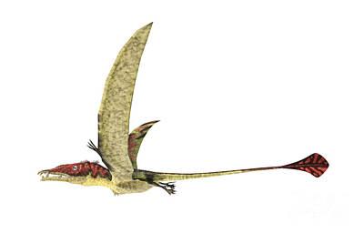 Triassic Digital Art - Eudimorphodon Flying Prehistoric by Leonello Calvetti