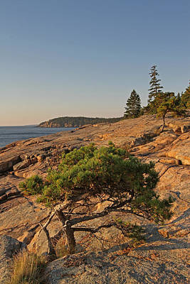Seascape Photograph - Evergreen by Juergen Roth