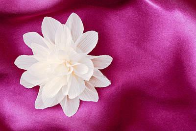 Wedding Favors Photograph - Fabric Flower by Tom Gowanlock