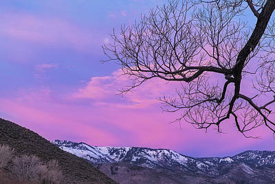Art Print featuring the photograph Fading Winter Moon by Nancy Marie Ricketts