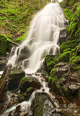 Fairy Falls In The Columbia River Gorge Area Of Oregon Art Print by Jamie Pham