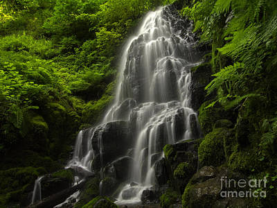 Tim Moore Photograph - Fairy Falls by Tim Moore