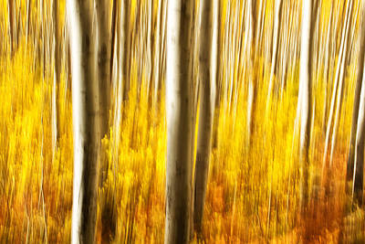 Art Print featuring the photograph Fall Abstract by Ronda Kimbrow