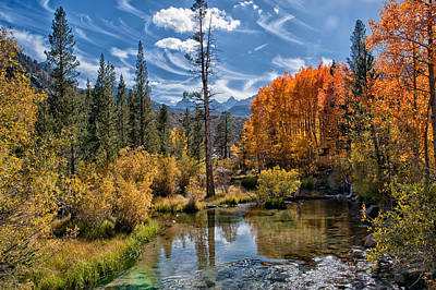 Mountain Royalty-Free and Rights-Managed Images - Fall at Bishop Creek by Cat Connor