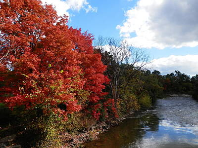 Fall At The Credit River Art Print