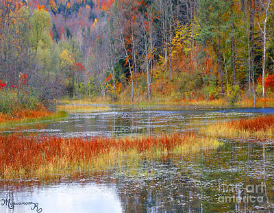 Photograph - Fall Colors by Mariarosa Rockefeller