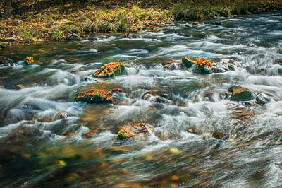 Photograph - Fall Colors Stream Great Smoky Mountains Painted  by Rich Franco