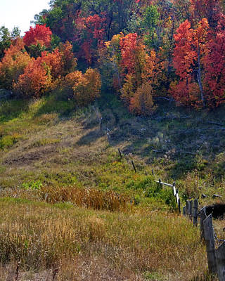 Jerry Sodorff Royalty-Free and Rights-Managed Images - Fall Fence Line 12052 by Jerry Sodorff