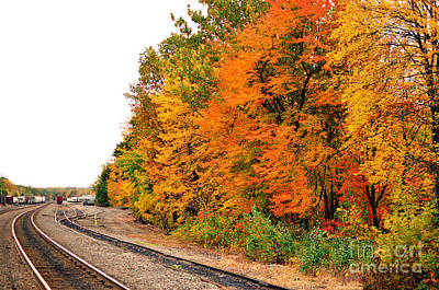 Photograph - Fall Foliage In New England W Train Tracks by Staci Bigelow