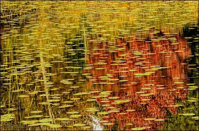Photograph - Fall Reflections by LeeAnn McLaneGoetz McLaneGoetzStudioLLCcom