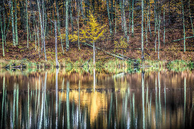 Country Scene Photograph - Fall Reflections by Paul Freidlund