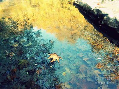 Photograph - Fallen by Ioanna Papanikolaou