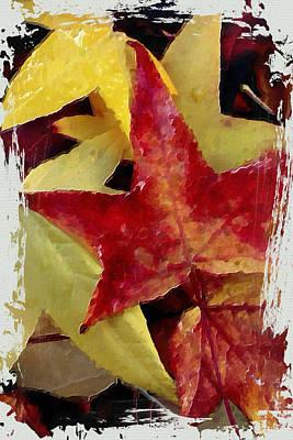 Fallen Leaf Mixed Media - Fallen Leaves by Bonnie Bruno