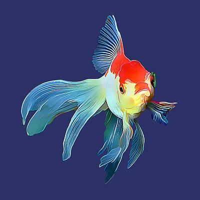 Fantail Goldfish Art Print by Wernher Krutein