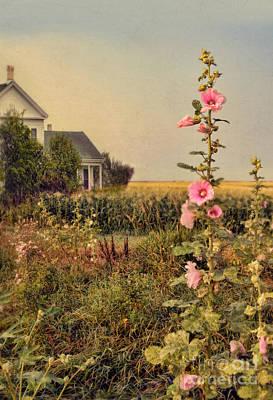 Farmhouse And Hollyhocks Art Print by Jill Battaglia