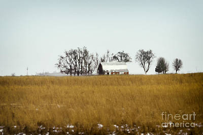Pasture Scenes Photograph - Farmland by Margie Hurwich