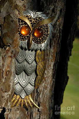 Fake Owl Photograph - Faux Owl With Golden Eyes by Amy Cicconi