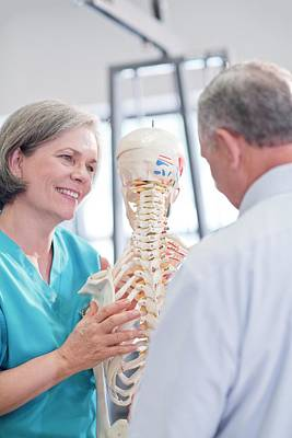 Female Chiropractor Showing Anatomical Model Art Print by Science Photo Library