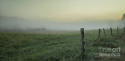 Photograph - Fence Line And Fog by David Waldrop