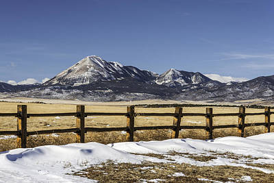 Photograph - Fence Line by David Waldrop