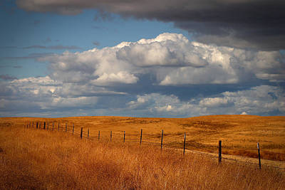 Photograph - Fence Line by Robert Melvin