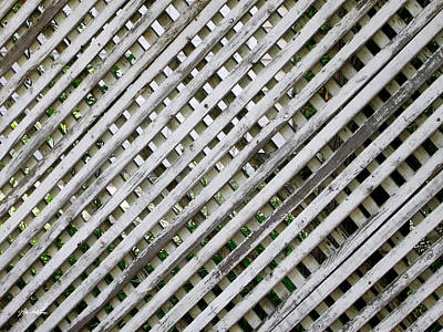 Photograph - Fence by The Art of Marsha Charlebois
