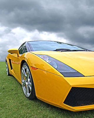 Photograph - Field Of Gold - Lamborghini by Gill Billington