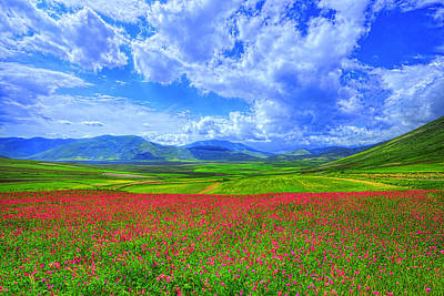 Umbria Photograph - Fields Of Dreams by Midori Chan