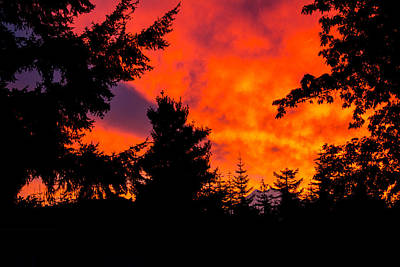 Photograph - Fiery Dawn by Tikvah's Hope