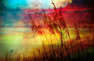 Fiery Sunrise  Art Print by Kathy Jennings