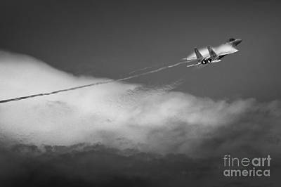Photograph - Fighter by Ryan Heffron
