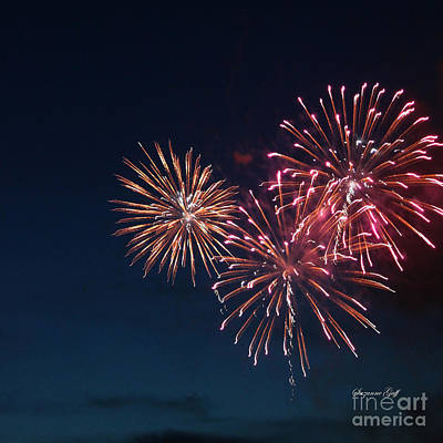 Fireworks Series Vi Art Print by Suzanne Gaff