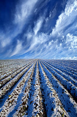 Photograph - First Snow by Phil Koch