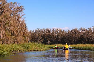 Photograph - Fisheating Creek by Jonathan Gewirtz