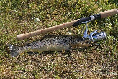 Fishing Print by IB Photo