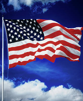 Flag Of The United States Of America Art Print