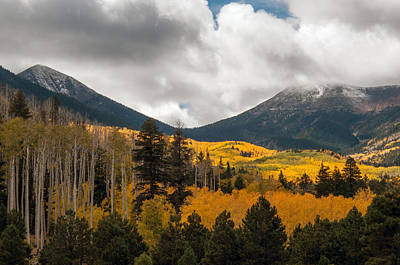 Flagstaff Fall Color Art Print