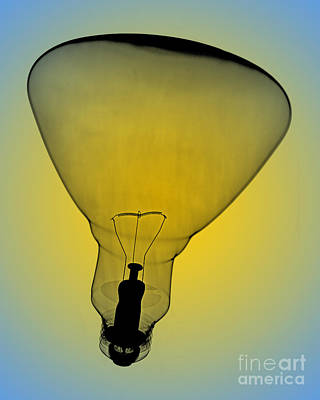 Photograph - Flood Bulb X-ray by Bert Myers