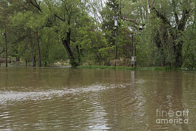 Photograph - Flooded Park by William Norton