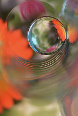 Floral Abstract Photograph - Floral Sphere by Heidi Westum