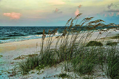 Photograph - Florida Gulf Coast by Janet Maloy