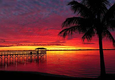 Photograph - Florida Sunset IIi by Elaine Franklin
