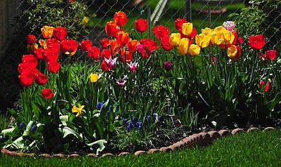 Photograph - Flower Garden by Frozen in Time Fine Art Photography