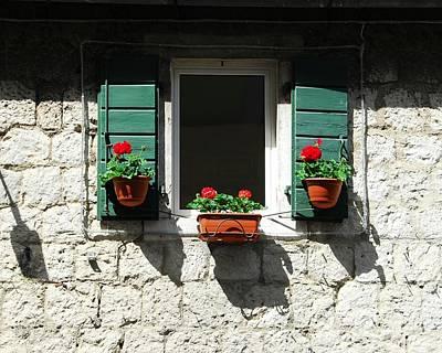 Photograph - Flower Pot Shadows by Mel Steinhauer
