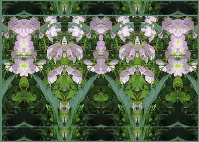 Photograph - Flowers From Cherryhill Nj America Silken Sparkle Purple Tone Graphically Enhanced Innovative Patter by Navin Joshi